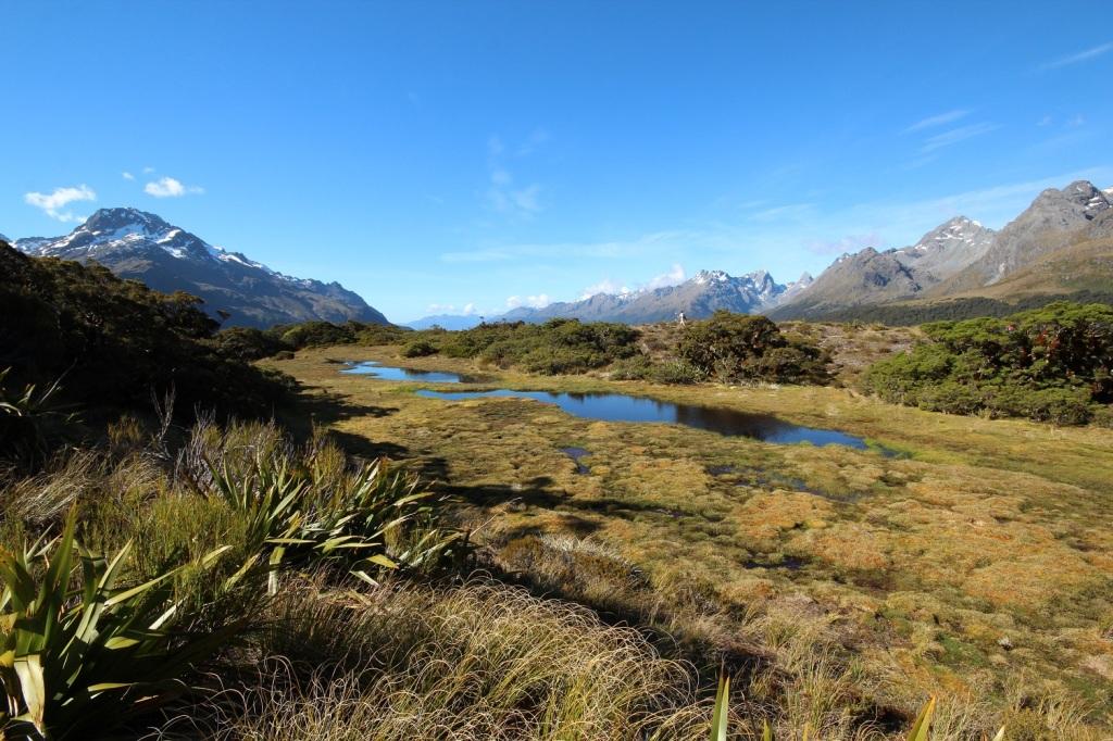 Selon certains membres de la troupe, ces deux mares figurent les îles du nord et du sud de la Nouvelle-Zélande